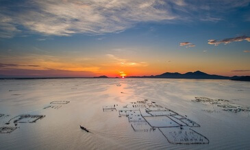 Thang Soi's Vision of Vietnam from Above